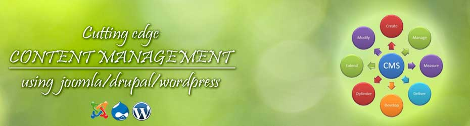 Joomla, Drupal, Wordpress based site development